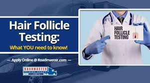 Hair Follicle Testing - What You Need To Know - Roadmaster Drivers ...