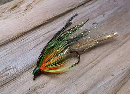 Pumpkin Seed Sunfish Pictures the fatal attraction baby pumpkinseed an adventures in fly tying