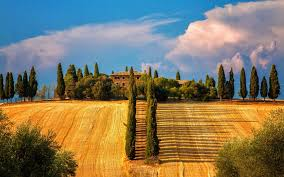 Italy Siena Tuscany Trees Cypresses Fields House Summer Wallpaper