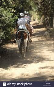 Irvine Regional Park Pumpkin Patch by Irvine Park Horseback Riding Best Riding 2017