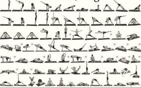 Yoga For Beginners On Twitter Sequence