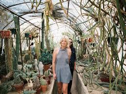 Innovative Botanical Gardens Palm Springs Moorten Botanical Garden