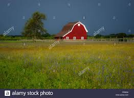Red Barn, North Fork Of Long Island, New York Stock Photo, Royalty ... Red Barn Under Storm Clouds Stone Arabia Mohawk Valley Of New And Farms In York State Background 20 Barn Ln For Rent Middletown Ny Trulia Properties Home Autumn Gordon W Dimmig Photography Kuglers Photo Print Red Barn Keene Valley Adirondack Mountains New York 157 Road Cobleskill 12157 201709973 Upstate Reflections Late Afternoon Columbia County On Hoosick St In Troy Im The Only One My Family With Snow Covered Trees Winter Stock Image Dutchess Daniel Contelmo Architects
