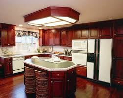 Image Of Unique Kitchen Themes And Decor