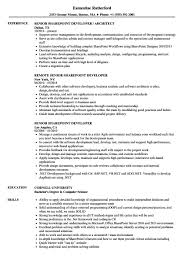 Samples Senior Sharepoint Developer Resume