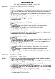Samples Senior Sharepoint Developer Resume