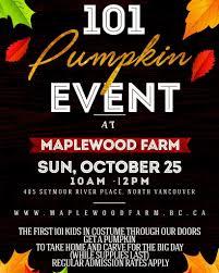 Pumpkin Farm In Maple Park Il by Maplewood Farm Fun For Everyone