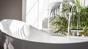 mit pflanzen das badezimmer begrünen ndr de ratgeber