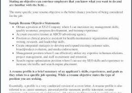 Gallery Of What Is A Summary On Resume 24 Amazing Server Sierra