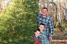 Types Of Christmas Tree Leaves by K Family Christmas Tree 2014 Jvkom Chronicles