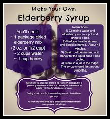 Last Day For 1 Any by Elderberry Syrup Kit U2013 Light Footsteps