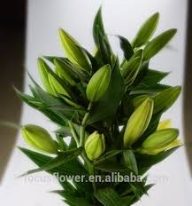 a quality artificial easter flower lilies on sale