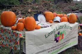 Spring Hope Pumpkin Festival 2014 by Long Lane Farm News Wesleyan