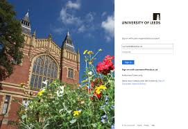 University of Leeds IT