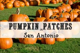 Pumpkin Patch Marble Falls by Pumpkin Patches In San Antonio Texas 2017 Fall Farm Activities