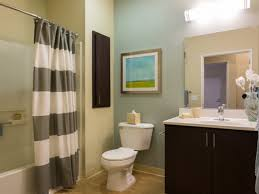 Inspirational Bathroom Ideas For Apartments Theme Color Storage