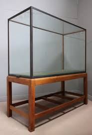 I Do Like Old Museum Display Cases