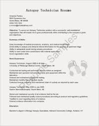 About Me Template For Resume Information Technology Example ...