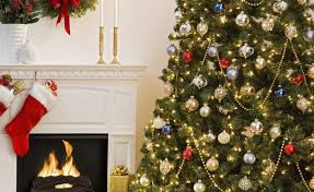Aspirin Keep Christmas Trees Alive by How To Make Your Christmas Tree Last Longer Houz Buzz