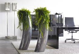 plantes pour bureau aude plantes paysages pour bureaux aude plantes la nature s invite