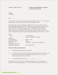 Chef Resume Sample Inspirational For Dummies Best Bsw Objective Examples