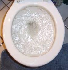 Clogged Toilet Drain Home Remedy by 15 Best Fix A Clogged Toilet Images On Pinterest Clogged Toilet