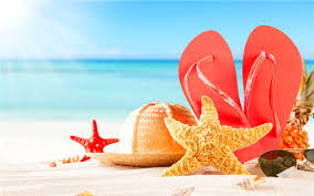 Beach Hat Starfish Slippers Wallpaper For Android
