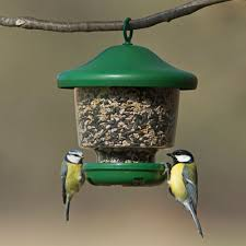 My Favourites Feeder RSPB Bird Feeders