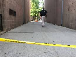 bed stuy moms killers arrested months after shooting nypd bed