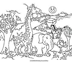 Animals Coloring Pages Printable Wildlife Detailed