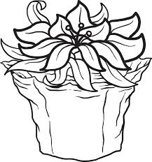 Free Printable Poinsettia Coloring Page For Kids