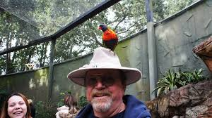 Halloween Busch Gardens 2014 by Busch Gardens Tampa Trip Report January 2014 Hungry Birds At