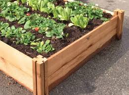 Gronomics Raised Garden Bed by Mahoney U0027s Garden Center Great Gifts For Mom