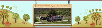 Pumpkin Patch Indianapolis Area by Apples Produce Pumpkins Hayrides Family Owned Chandler U0027s Farm