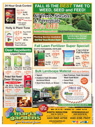Christmas Tree Shop Flyer by Coupons Current Promo Fliers