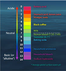 100 Ph Of 1 The PH Scale With Some Common Examples
