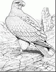 Beautiful Advanced Coloring Pages Eagle With And American