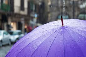 Shed Rain Umbrella Amazon by Off Topic What U0027s The Best Umbrella You U0027ve Ever Had Kotaku