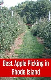 Pumpkin Picking Ct Best by 100 Best Pumpkin Picking In Ct Best 25 New England Fall