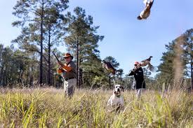 100 Brays Island South Carolina Plantation Lowcountry Community