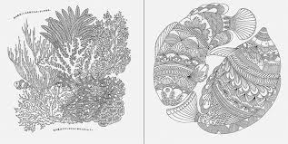 Animal Kingdom Colouring Book Pictures Aliexpress Buy Malbuch Packpacka Secret Garden III