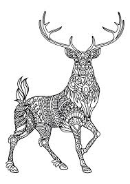 Zoo Animal Coloring Pages Pdf Animals Book