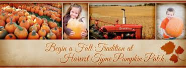 Pumpkin Patch Lafayette Al by Find Corn Mazes In Lowell Indiana Harvest Tyme Pumpkin Patch And