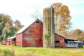 Foap.com: Old Red Barn With Silo And Antique Truck Stock Photo By ... Red Barn With Silo In Midwest Stock Photo Image 50671074 Symbol Vector 578359093 Shutterstock Barn And Silo Interactimages 147460231 Cows In Front Of A Red On Farm North Arcadia Mountain Glen Farm Journal Repurpose Our Cute Free Clip Art Series Bustleburg Studios Click Gallery Us National Park Service Toys Stuff Marx Wisconsin Kenosha County With White Trim Stone Foundation Vintage White Fence 64550176