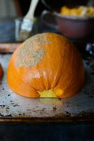 Roasting Pumpkin For Puree by Simply Scratch Roasted Pumpkin Purée Simply Scratch