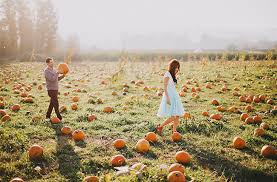 Morgan Hill California Pumpkin Patch by Engagement Session In A Pumpkin Patch Jenafer Morgan Green