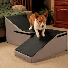 Bed Dog Ramp Emerging Pet For Selected Stairs Comfortable New Home ... Inexpensive Doggie Ramp With Pictures Best Dog Steps And Ramps Reviews Top Care Dogs Photos For Pickup Trucks Stairs Petgear Tri Fold Reflective Suv Petsafe Deluxe Telescoping Pet Youtube The Writers Fun On The Gosolvit And Side Door Dogramps Steps Junk Mail For Cars Beds Fniture Petco Lucky Alinum Folding Discount Gear Trifolding Portable 70 Walmartcom 5 More Black Widow Trifold Extrawide