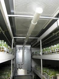 humidificateur chambre de culture humidité dans vos locaux conseils pour la maîtrise de l humidité