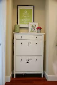 Ikea Bissa Shoe Cabinet White by The 25 Best Slim Shoe Cabinet Ideas On Pinterest Diy Shoe