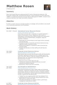 International Human Resources Director Resume Example